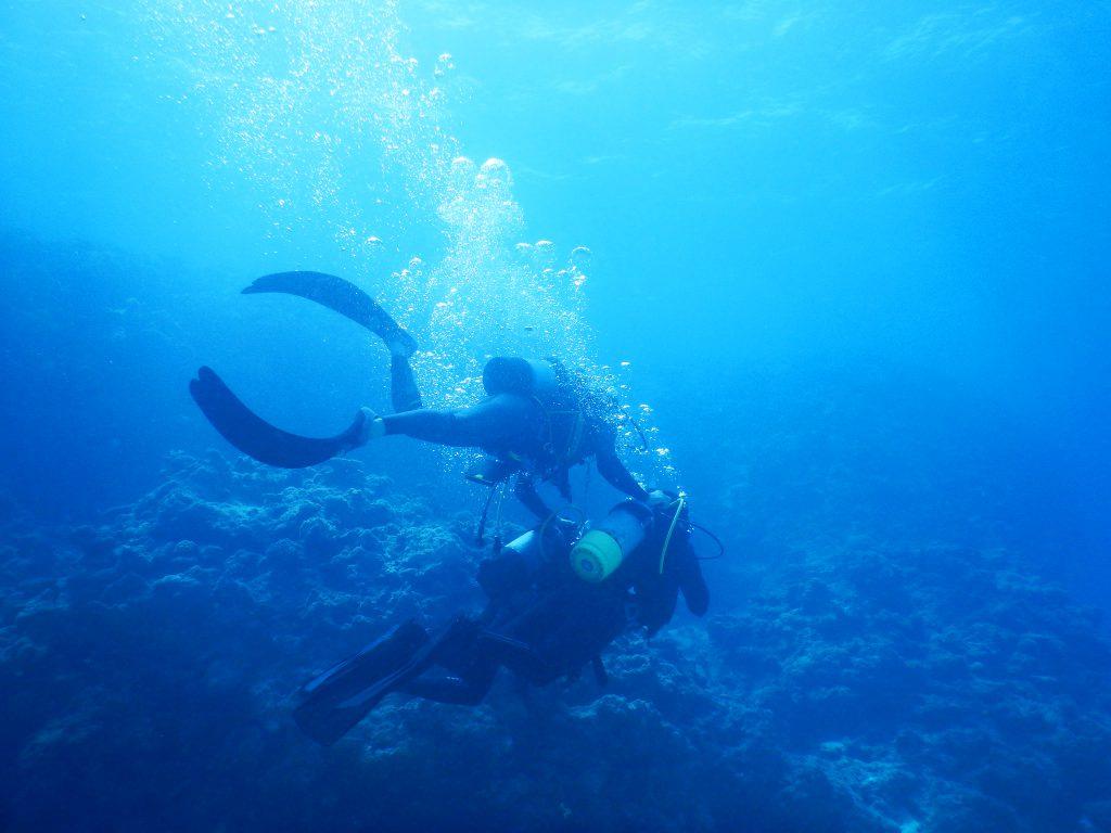 体験ダイビングの様子