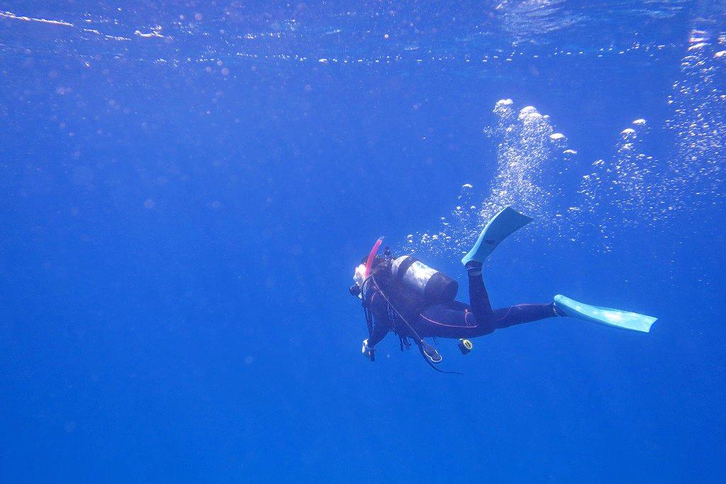青い海とダイバー