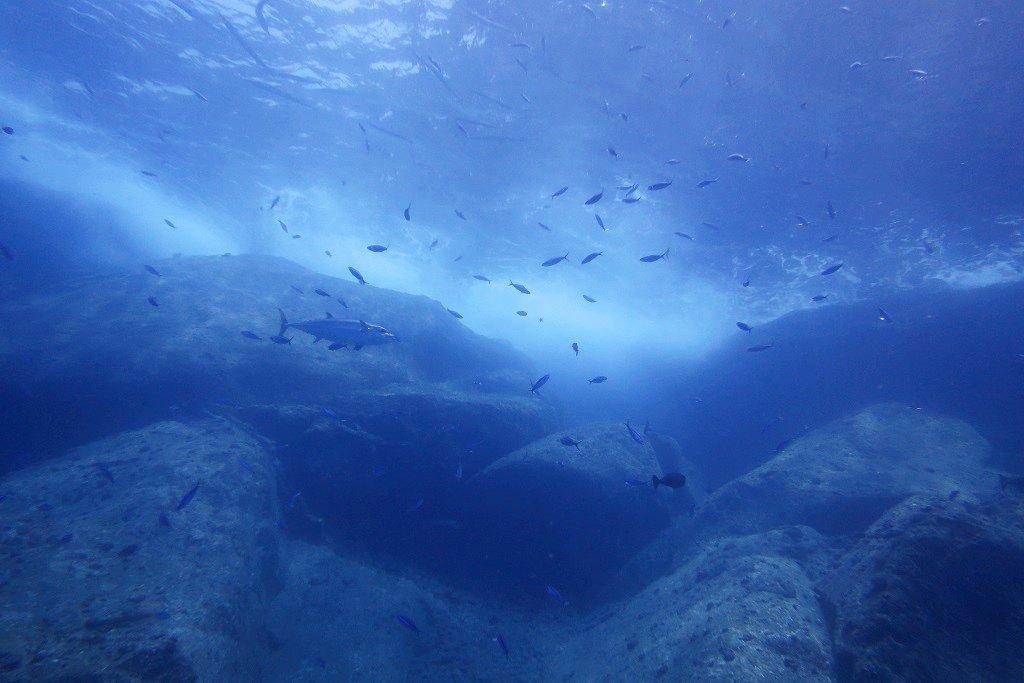 トンバラでのダイビング
