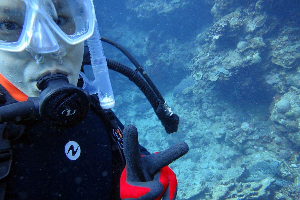 体験ダイビング ウミガメと一緒に