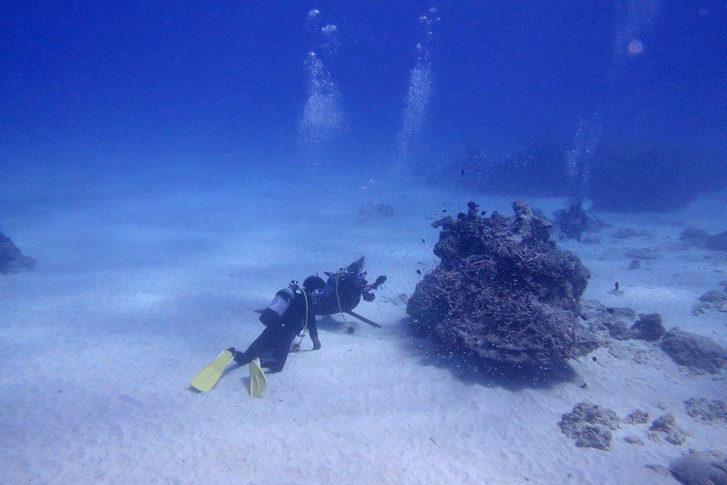 ブルーの海で体験ダイビング