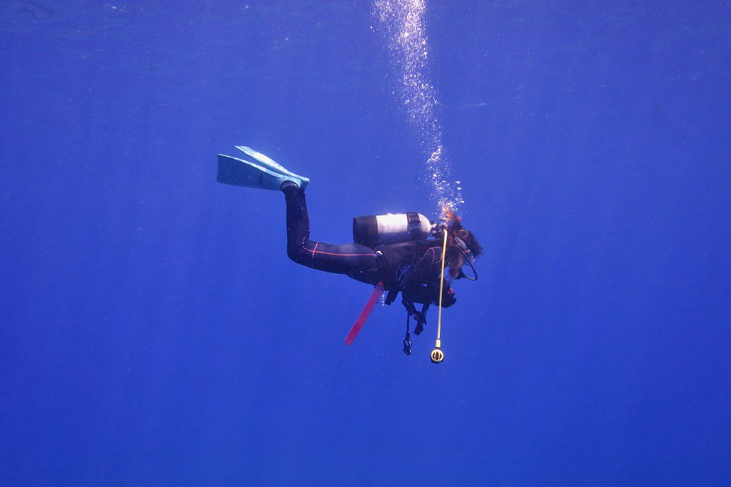 ブルーの海で安全停止