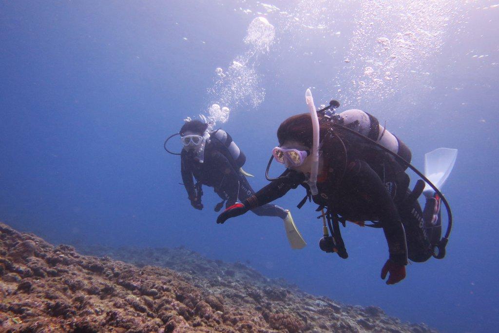 体験ダイビングのゲスト