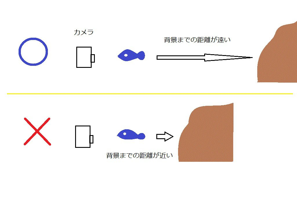 撮り方の図