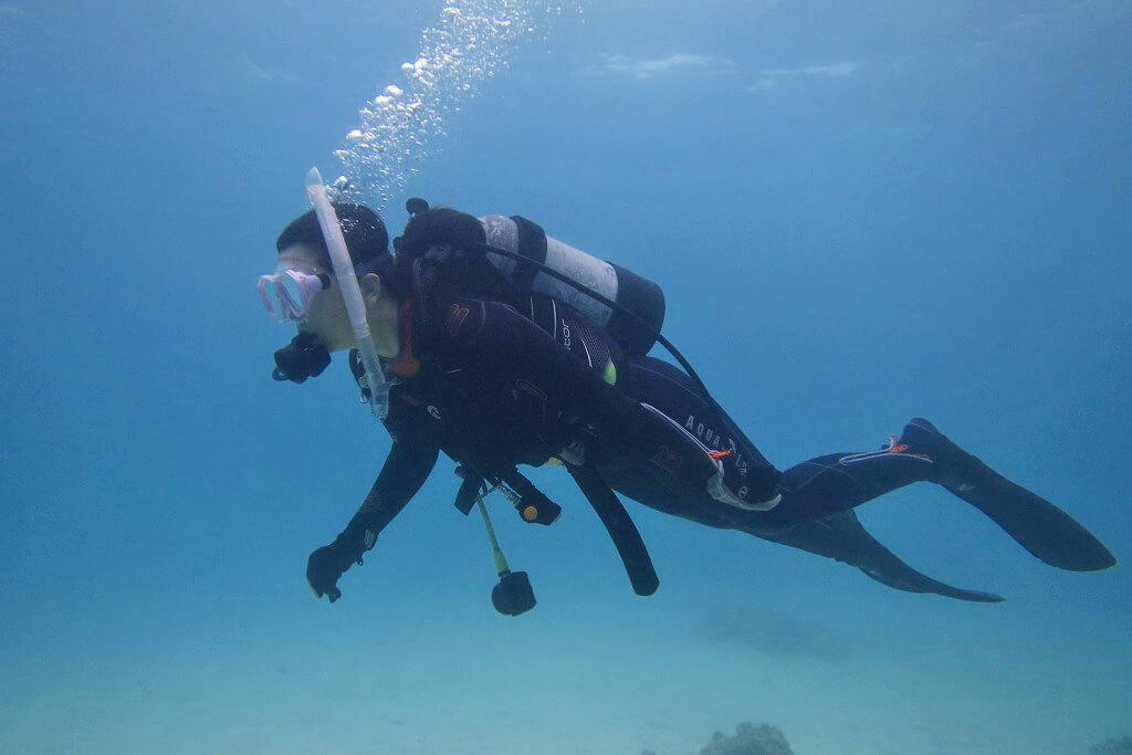 体験ダイビングのイメージ