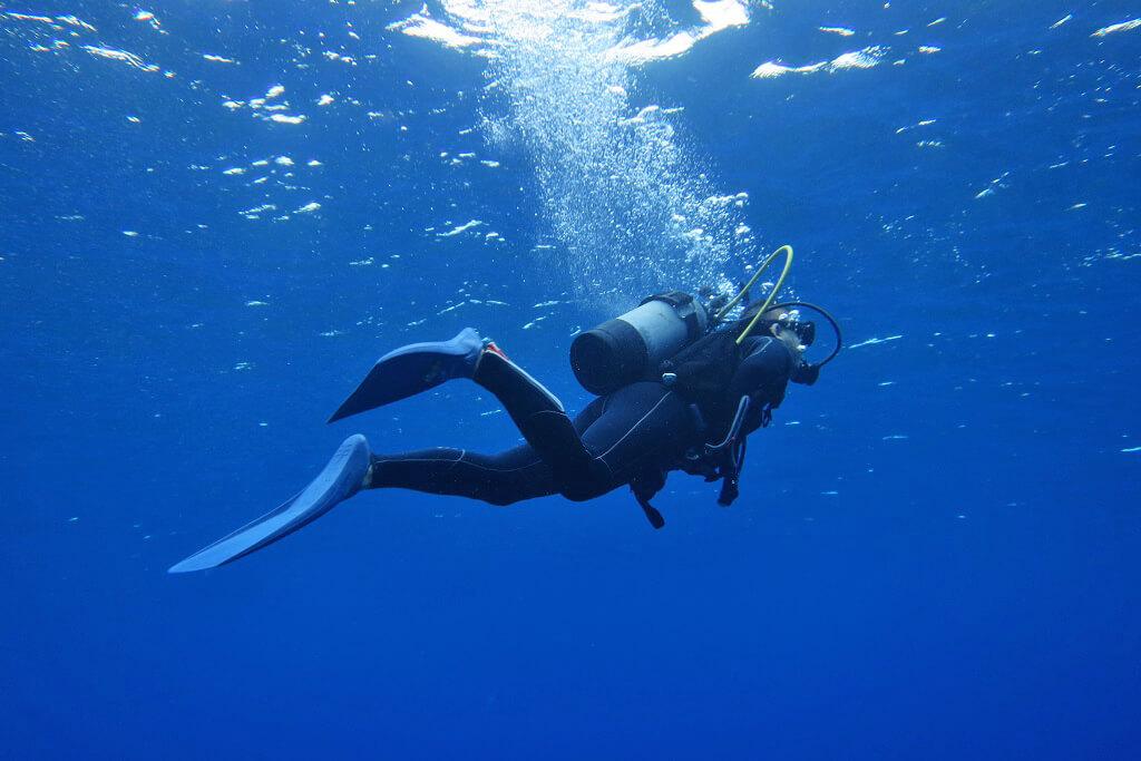 ブルーの海とゲスト