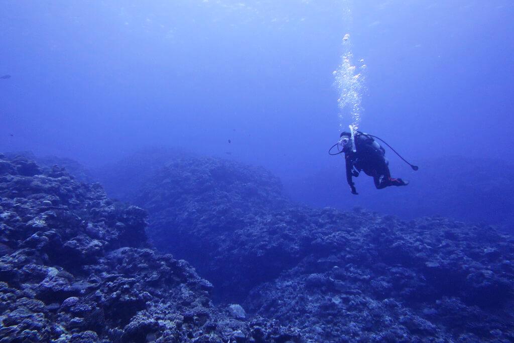 ブルーの海でOW講習