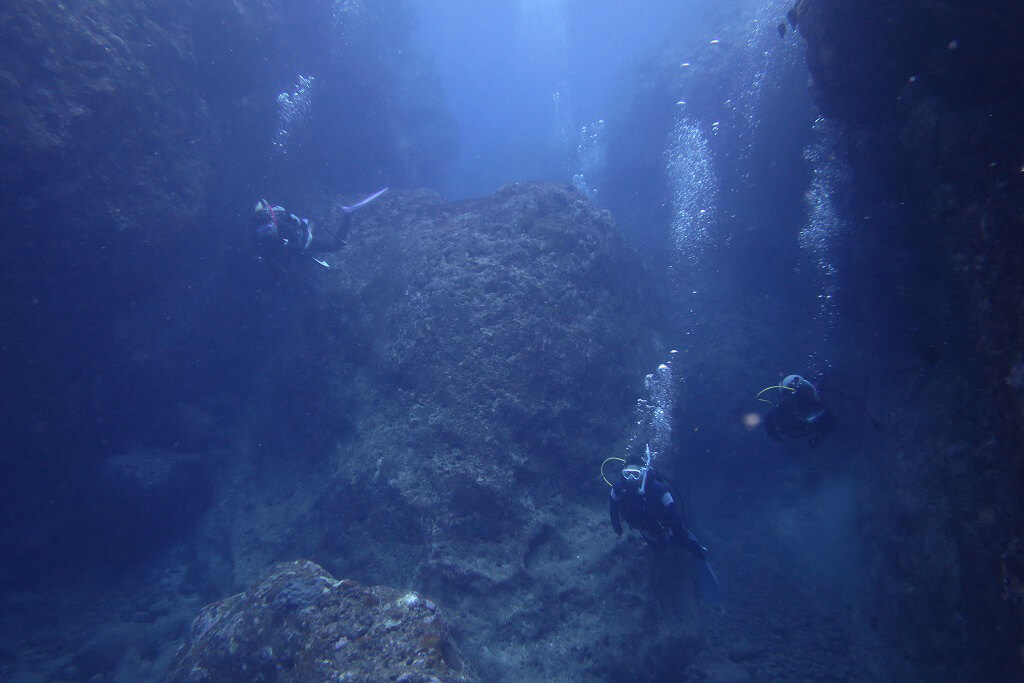 地形ダイビングを堪能