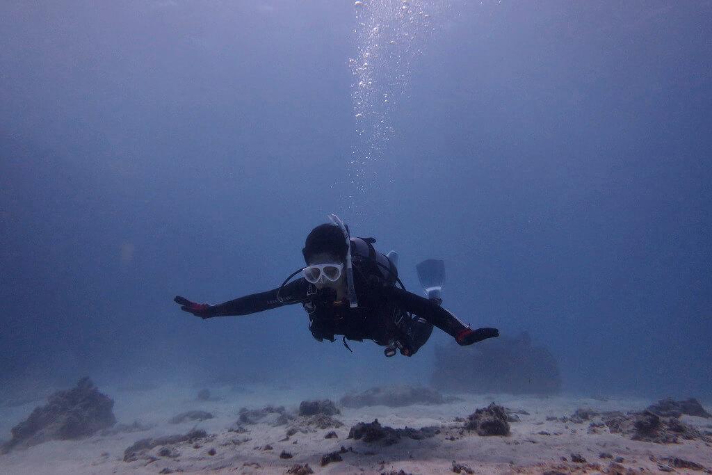 水中を泳ぐ