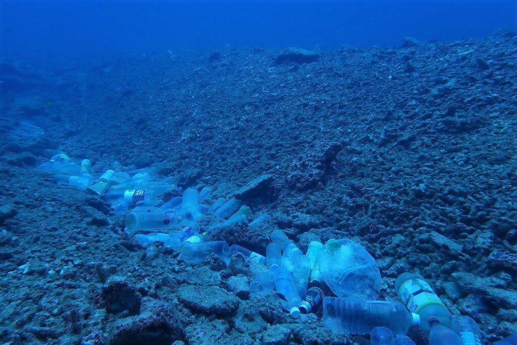 海底のペットボトルゴミ