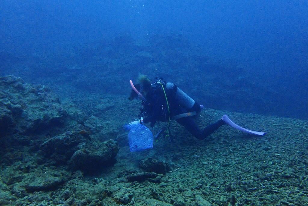 海底ゴミを拾う