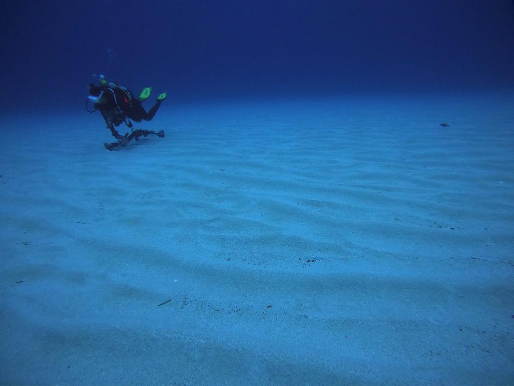 外洋の砂地