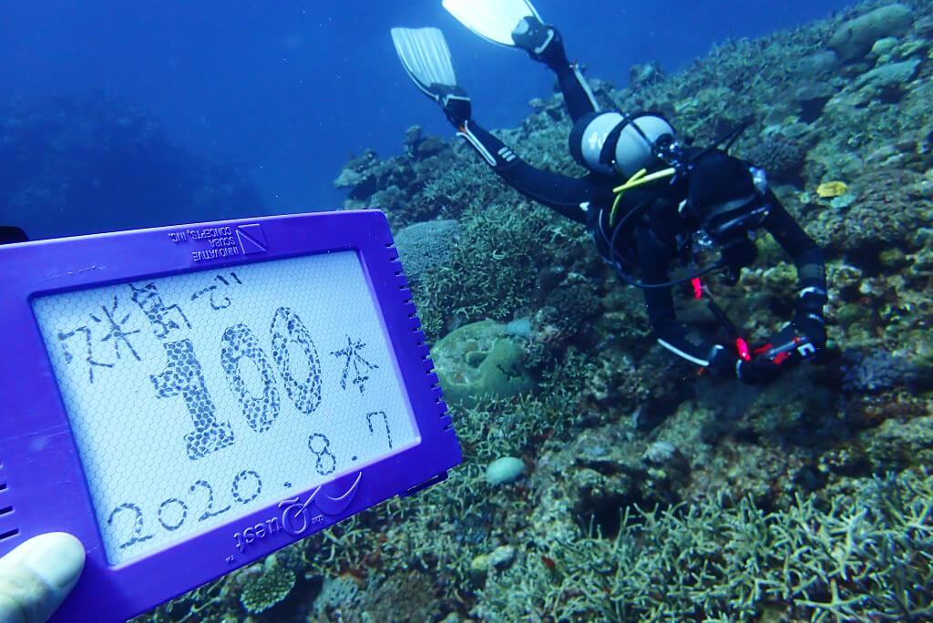 久米島100ダイブ