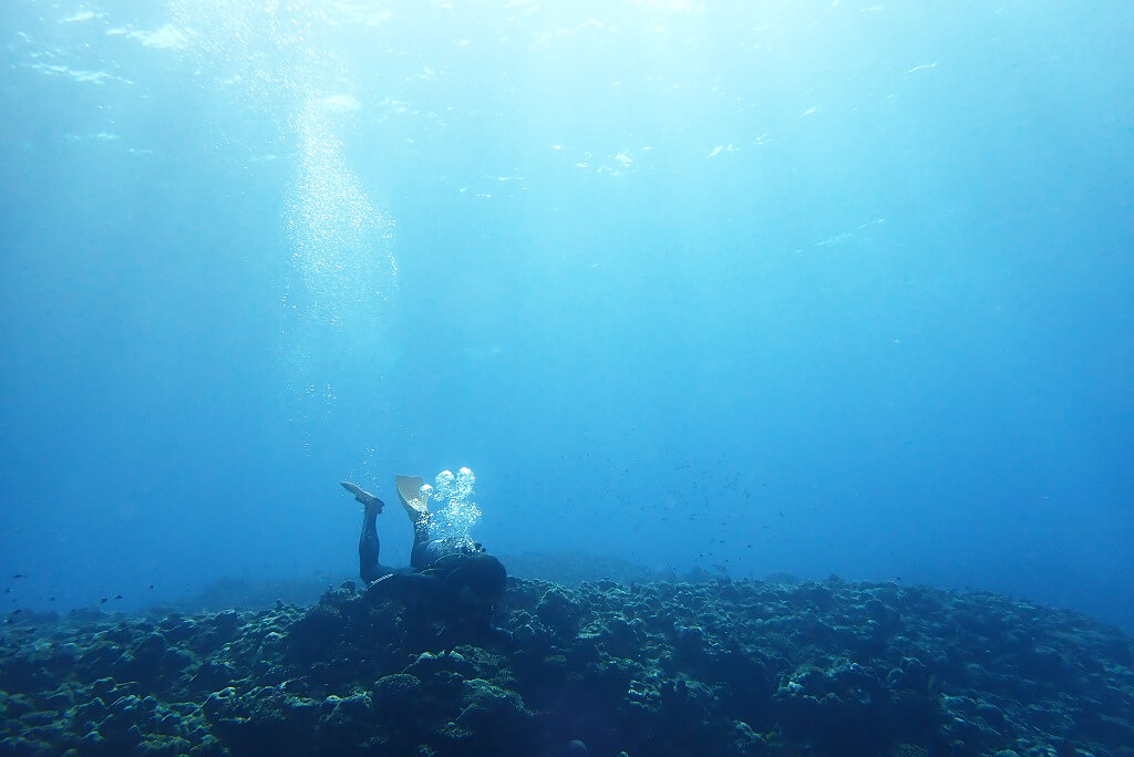 明るい水中