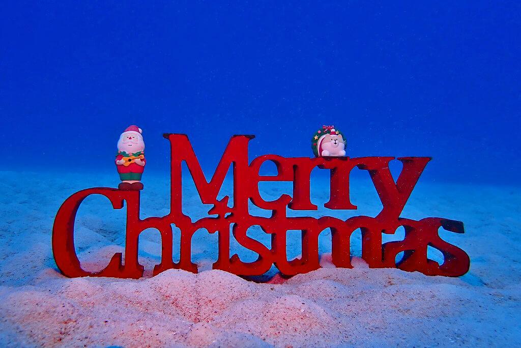 水中からクリスマス2