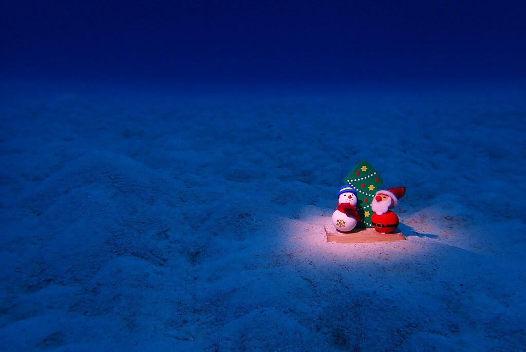 水中からメリークリスマス1